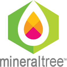 MineralTree Accounting App