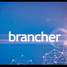 brancher Data Visualization App